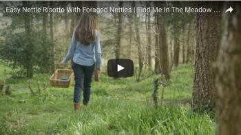 Foraging for nettles
